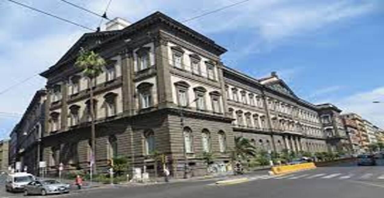 Read more about the article Ateneo Università Federico II- Napoli